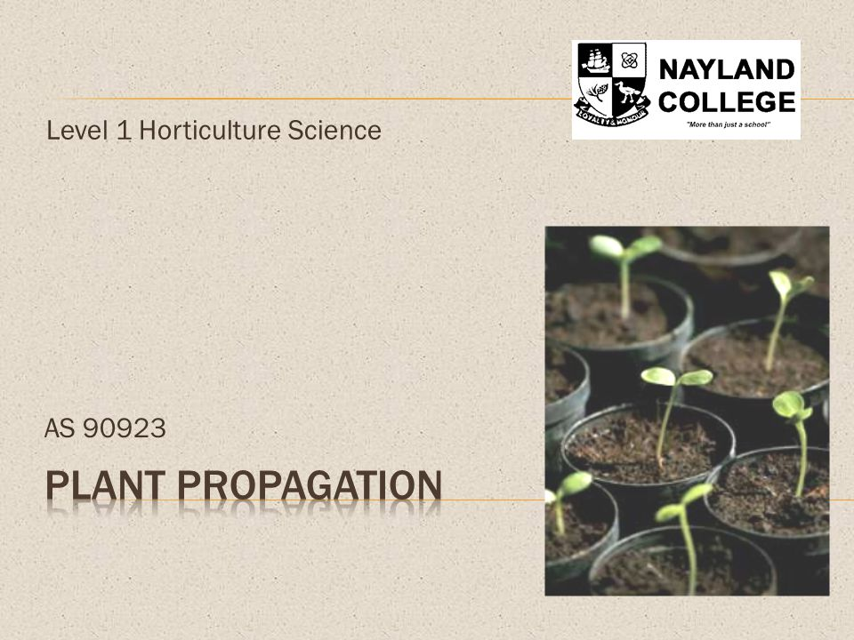 Level 1 Horticulture Science