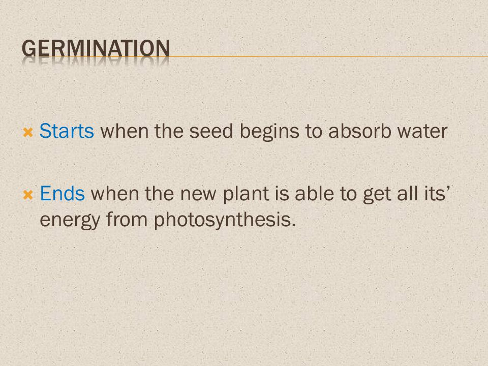 Germination Starts when the seed begins to absorb water