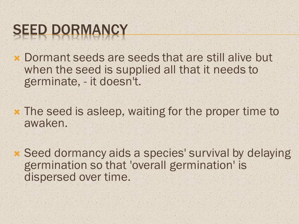 Seed dormancy Dormant seeds are seeds that are still alive but when the seed is supplied all that it needs to germinate, - it doesn t.