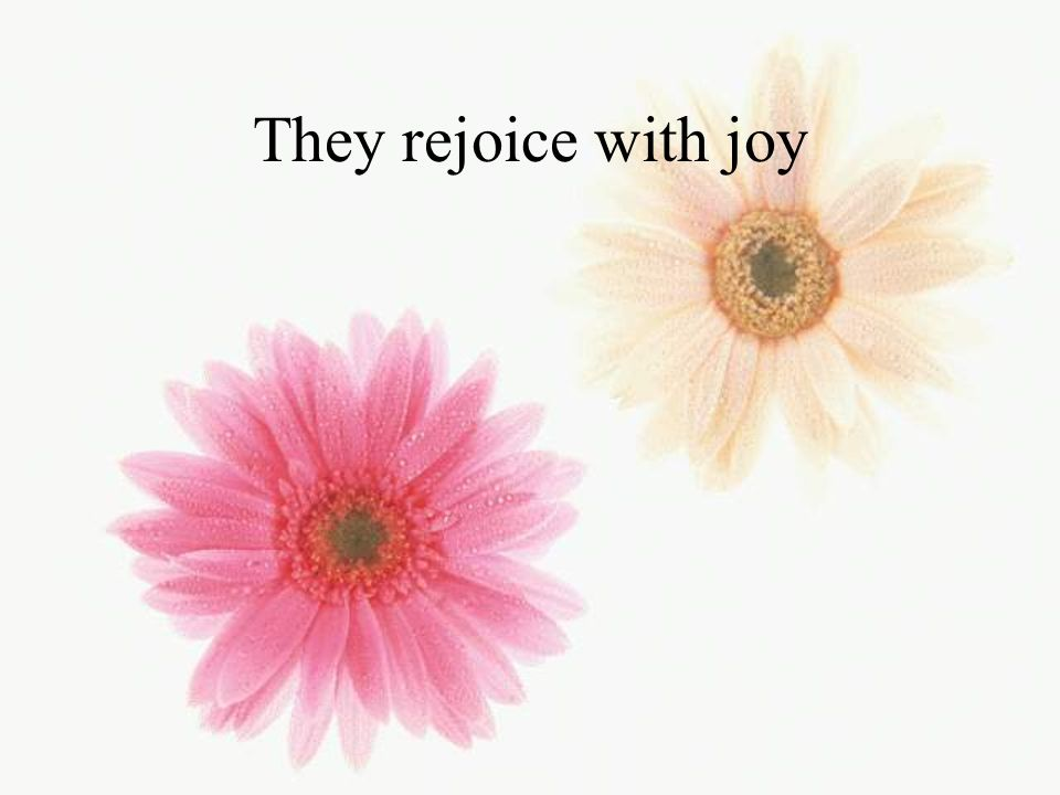 They rejoice with joy