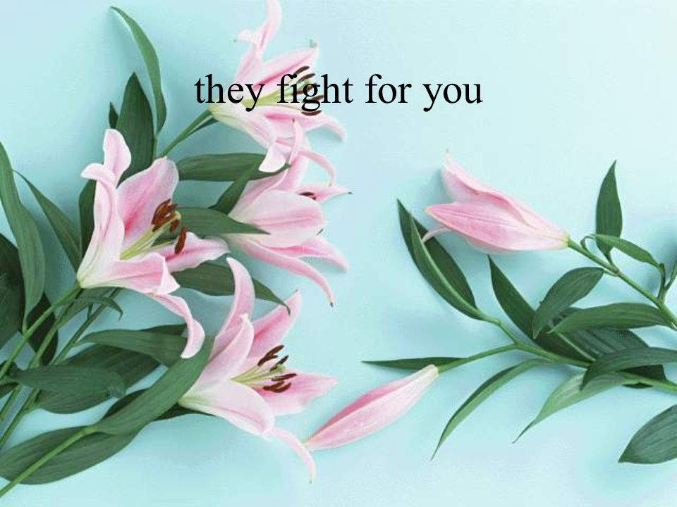 they fight for you