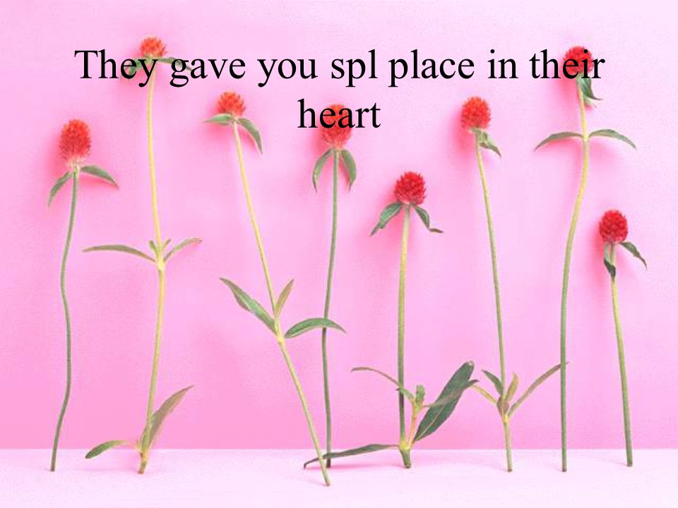 They gave you spl place in their heart