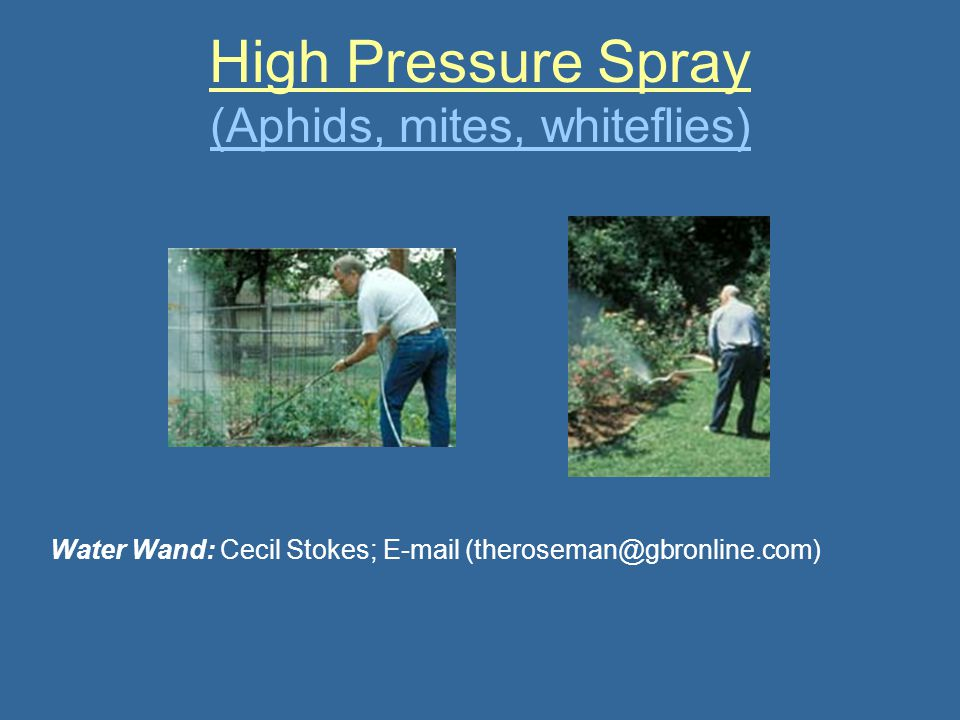 High Pressure Spray (Aphids, mites, whiteflies)
