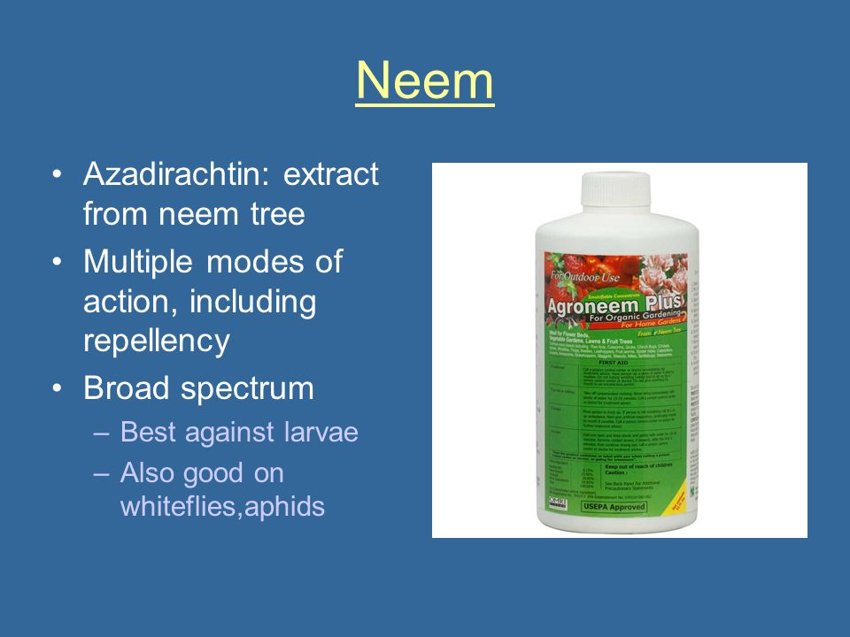 Neem Azadirachtin: extract from neem tree