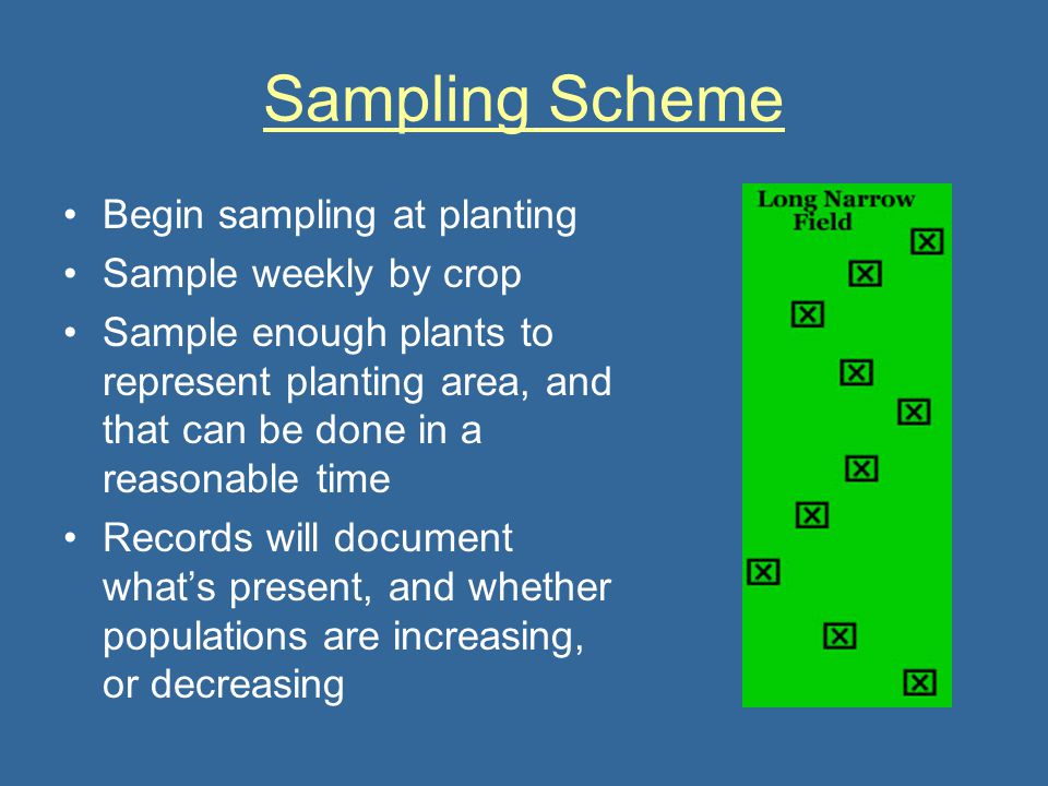 Sampling Scheme Begin sampling at planting Sample weekly by crop