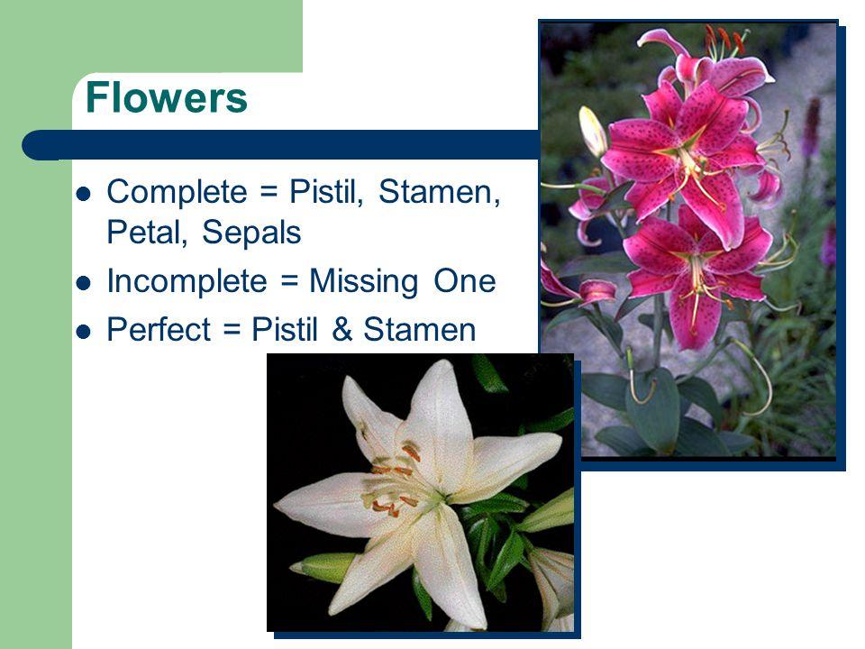 Flowers Complete = Pistil, Stamen, Petal, Sepals