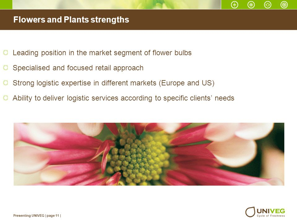 Flowers and Plants strengths