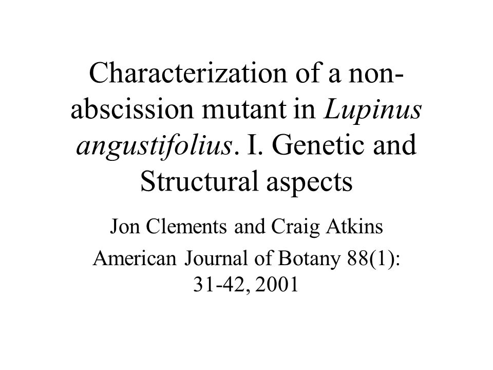 Characterization of a non-abscission mutant in Lupinus angustifolius. I. Genetic and Structural aspects