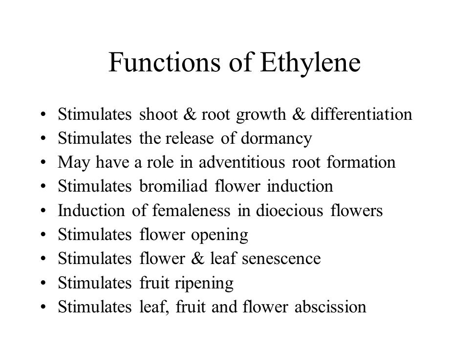 Functions of Ethylene Stimulates shoot & root growth & differentiation