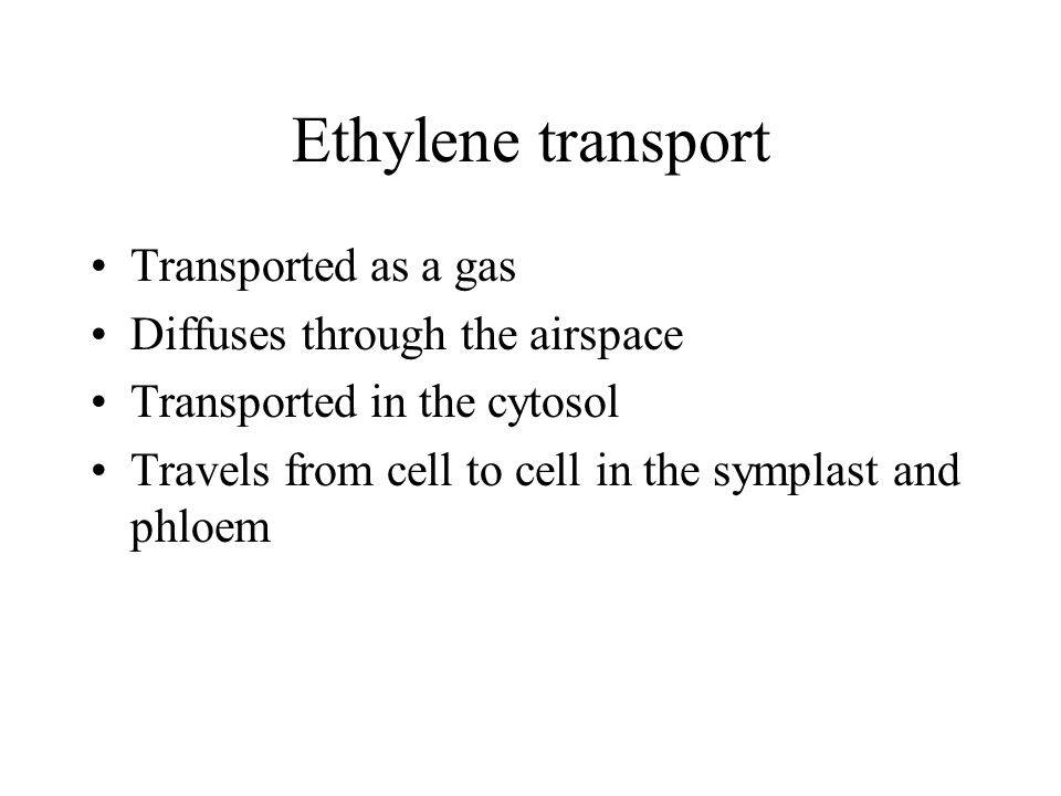 Ethylene transport Transported as a gas Diffuses through the airspace