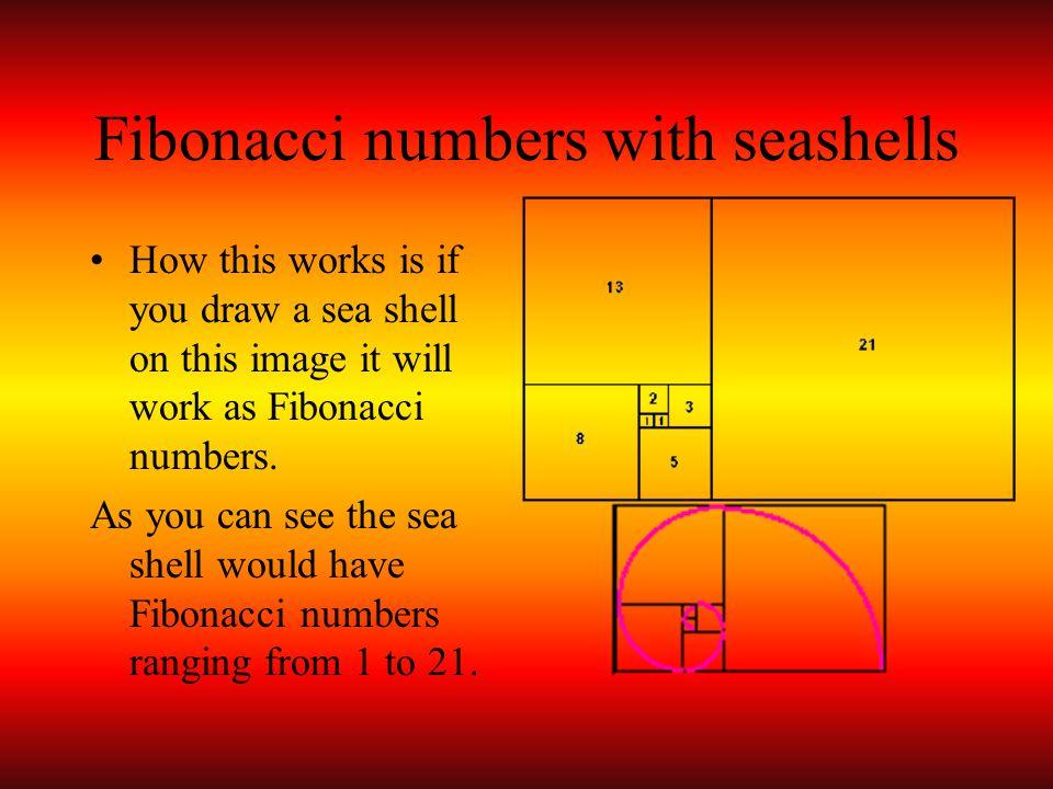 Fibonacci numbers with seashells