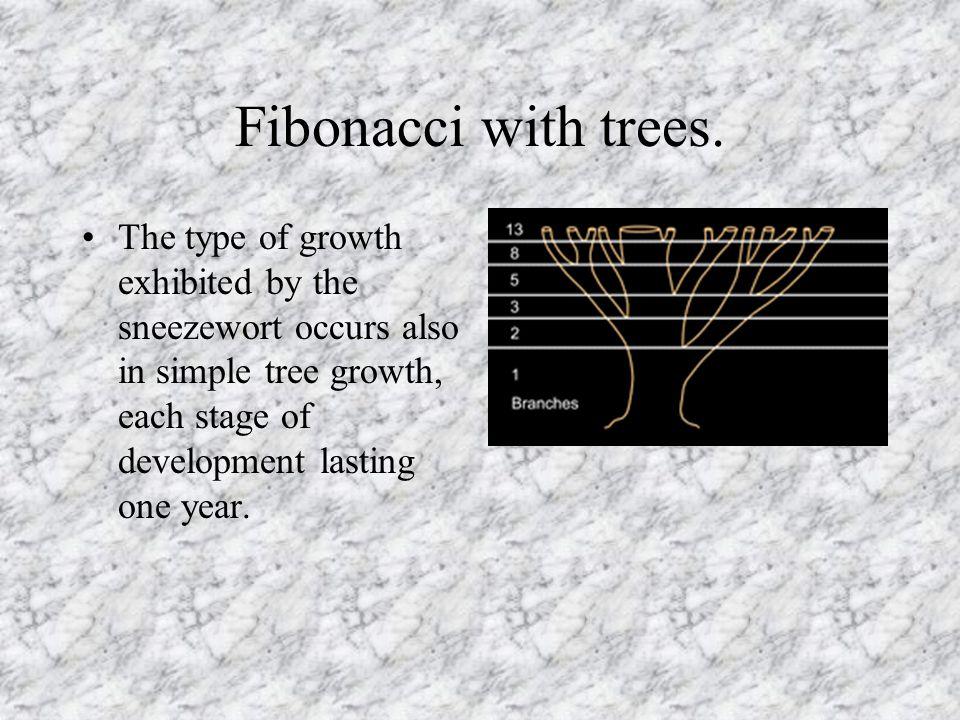Fibonacci with trees.