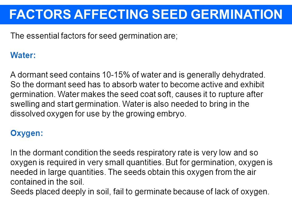 FACTORS AFFECTING SEED GERMINATION