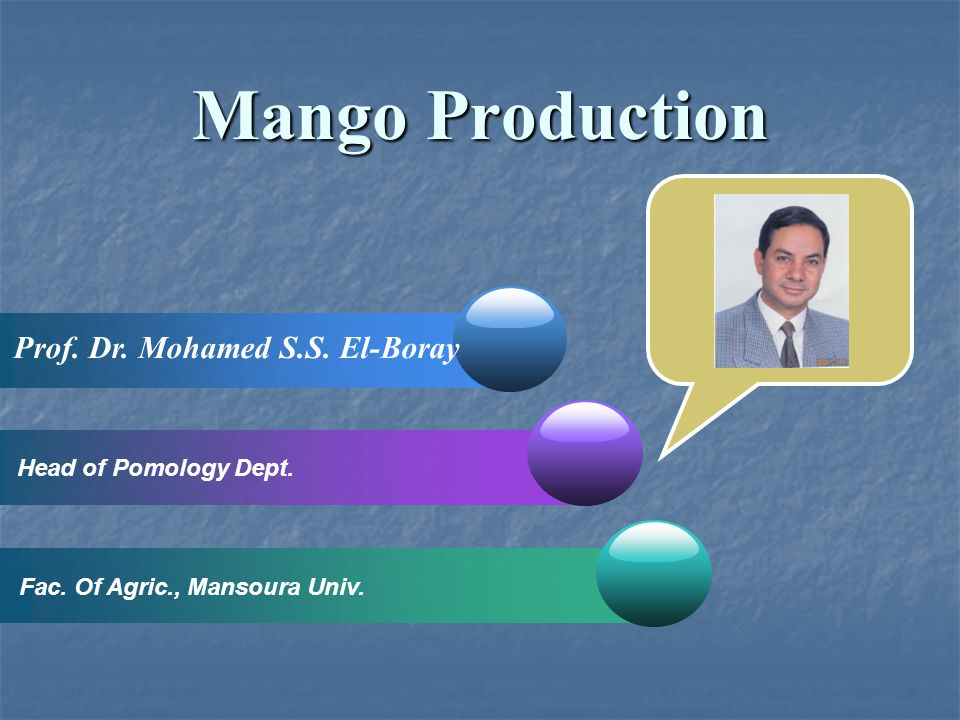 Mango Production Prof. Dr. Mohamed S.S. El-Boray