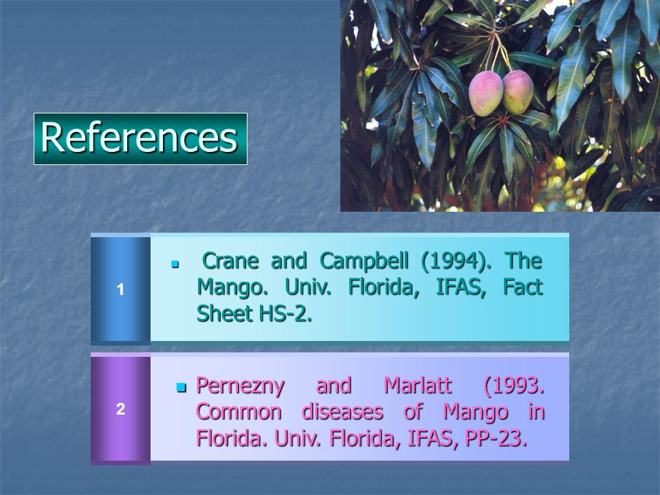 References 1. Crane and Campbell (1994). The Mango. Univ. Florida, IFAS, Fact Sheet HS-2. 2.