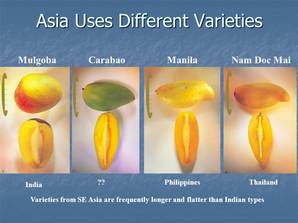 Asia Uses Different Varieties