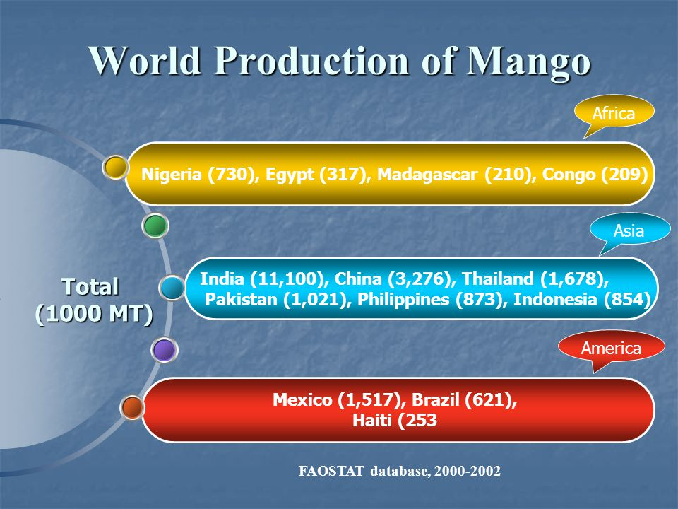 World Production of Mango