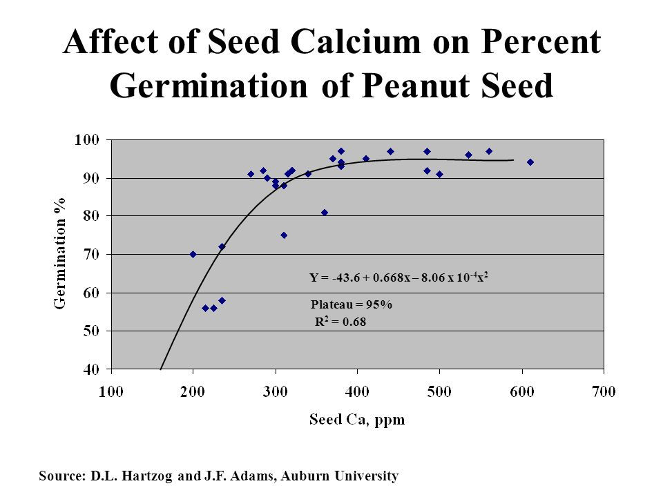 Affect of Seed Calcium on Percent Germination of Peanut Seed