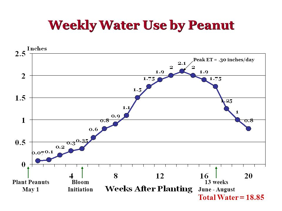 Weekly Water Use by Peanut