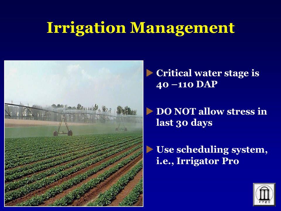 Irrigation Management