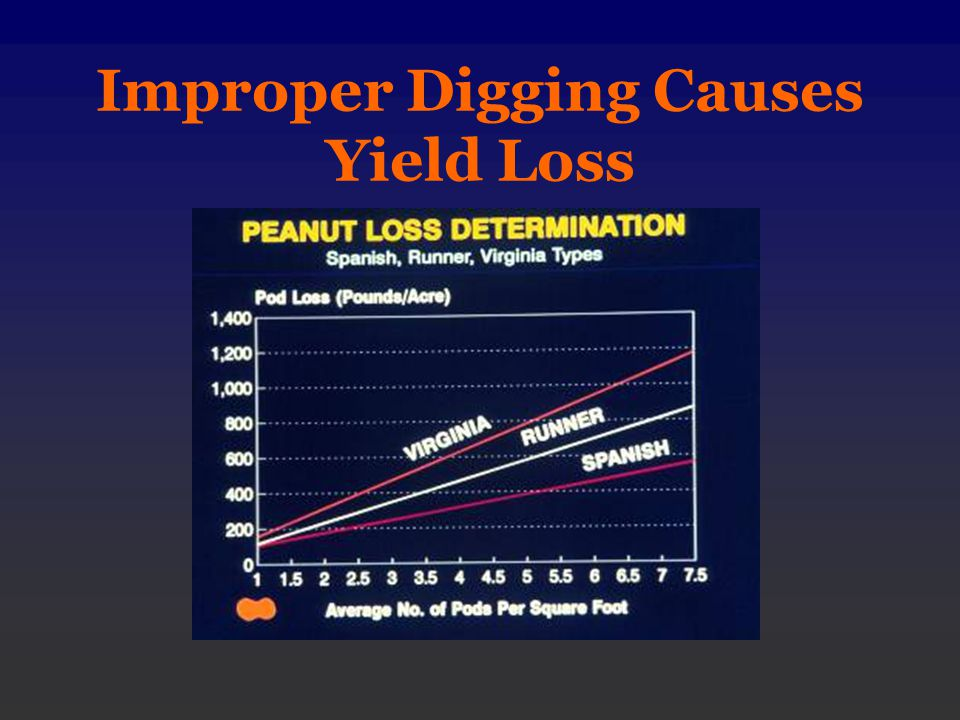 Improper Digging Causes Yield Loss