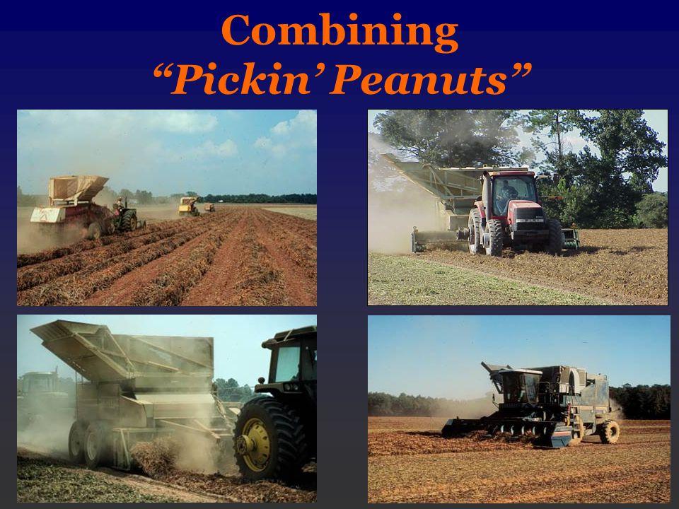 Combining Pickin' Peanuts