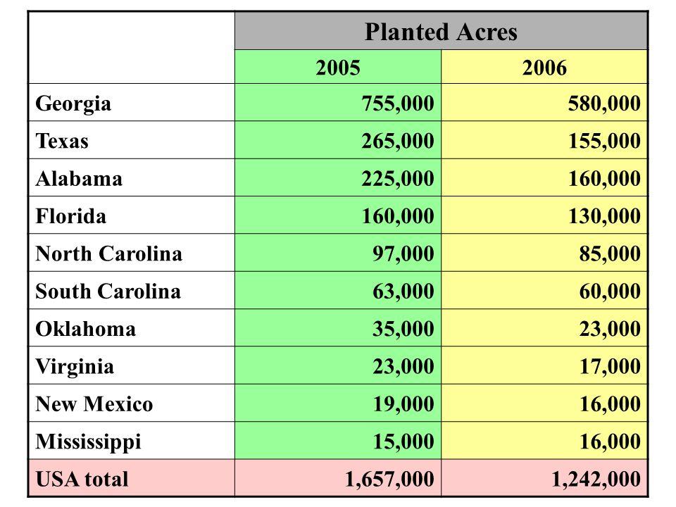 Planted Acres 2005 2006 Georgia 755,000 580,000 Texas 265,000 155,000