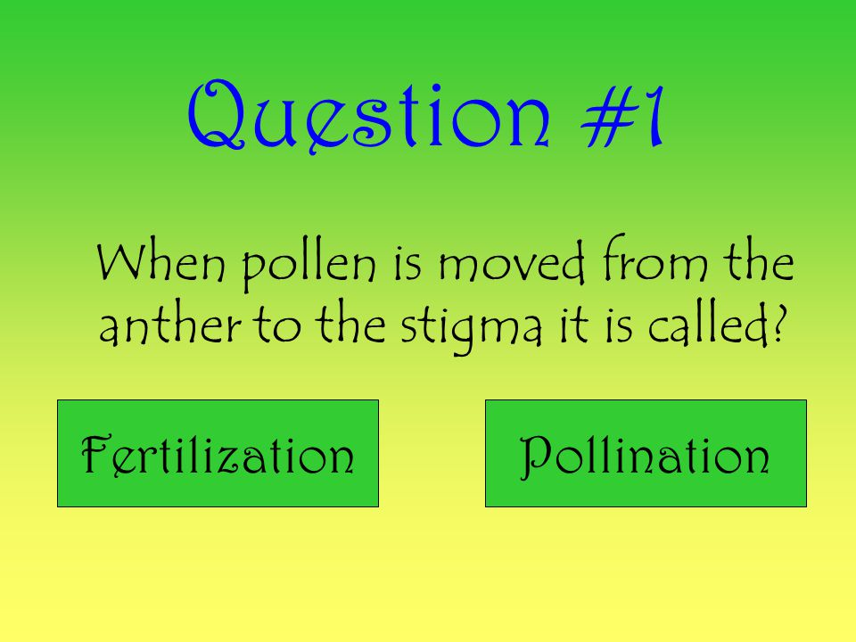 When pollen is moved from the anther to the stigma it is called