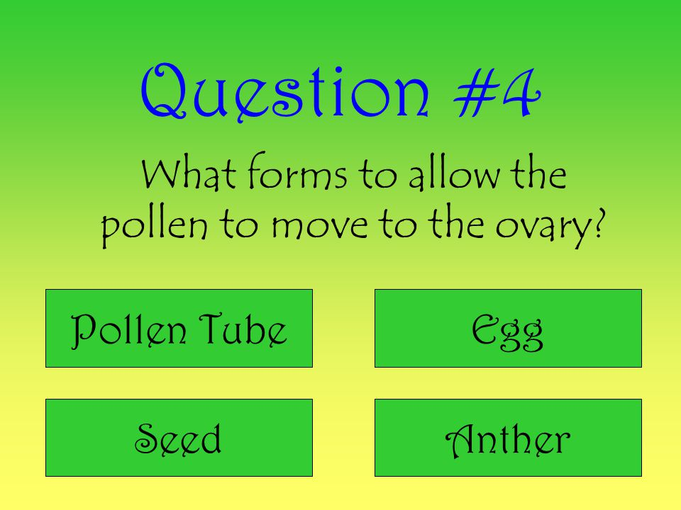 What forms to allow the pollen to move to the ovary