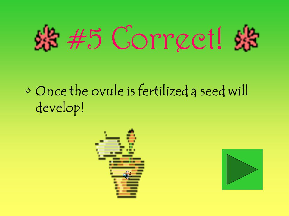 #5 Correct! Once the ovule is fertilized a seed will develop!