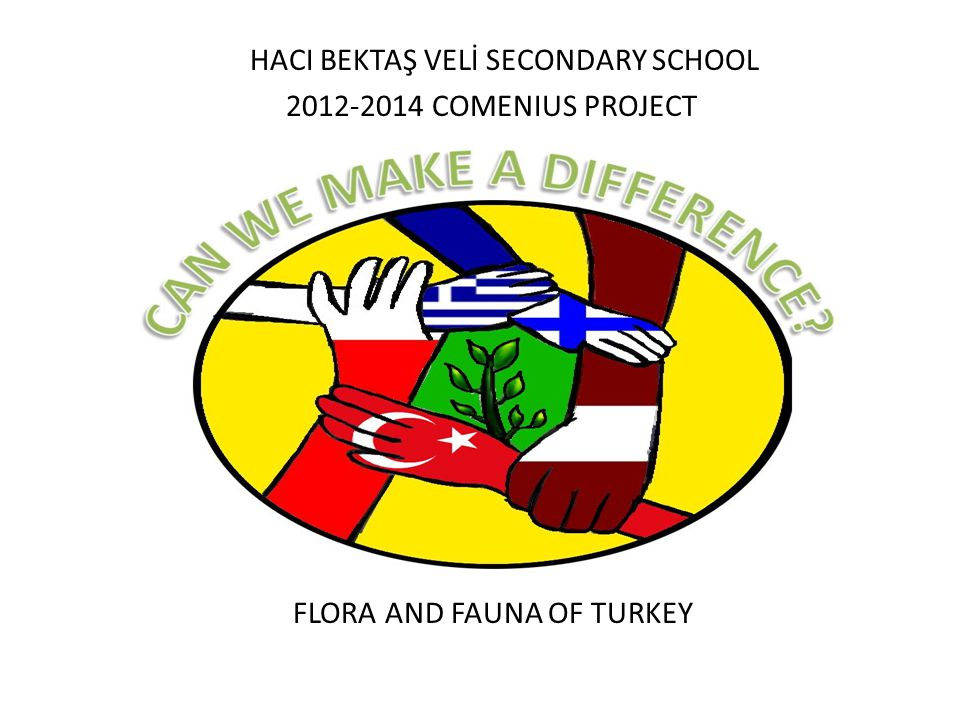 HACI BEKTAŞ VELİ SECONDARY SCHOOL COMENIUS PROJECT FLORA AND FAUNA OF TURKEY