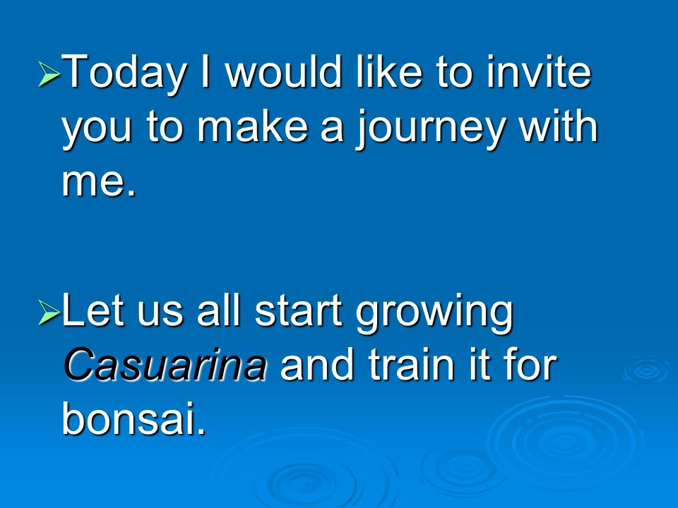 Today I would like to invite you to make a journey with me.