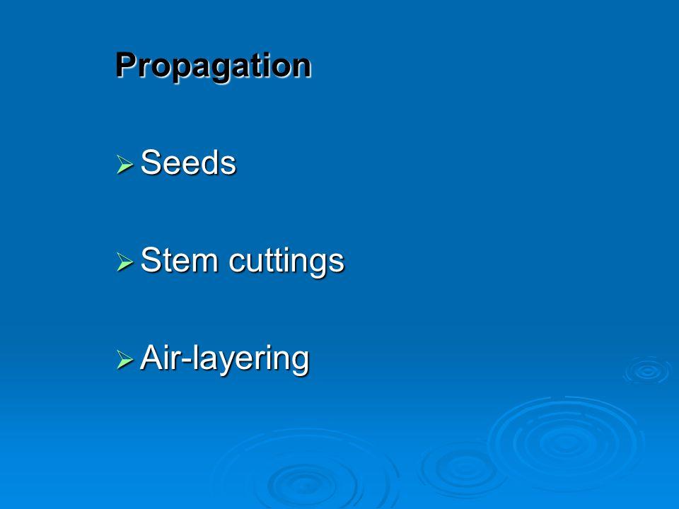Propagation Seeds Stem cuttings Air-layering