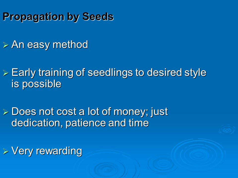 Propagation by Seeds An easy method. Early training of seedlings to desired style is possible.