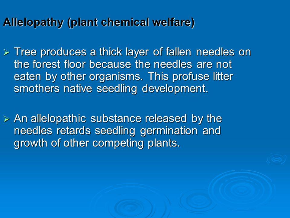 Allelopathy (plant chemical welfare)