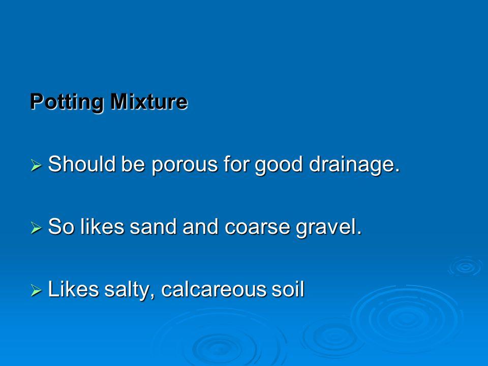 Potting Mixture Should be porous for good drainage.