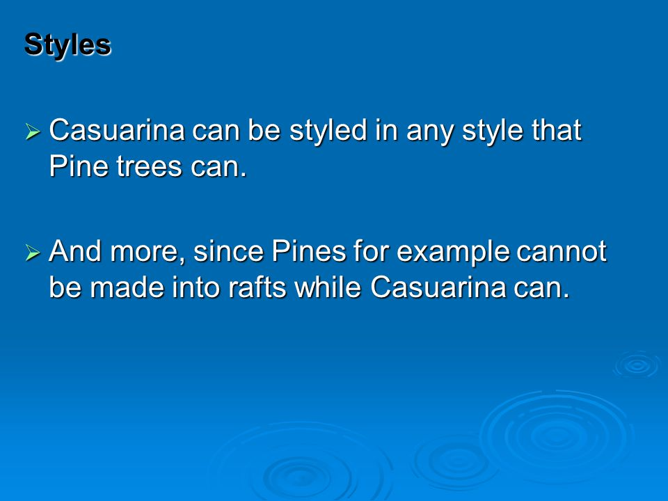 Styles Casuarina can be styled in any style that Pine trees can.