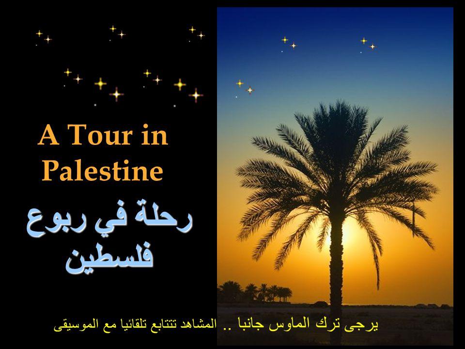 رحلة في ربوع فلسطين A Tour in Palestine
