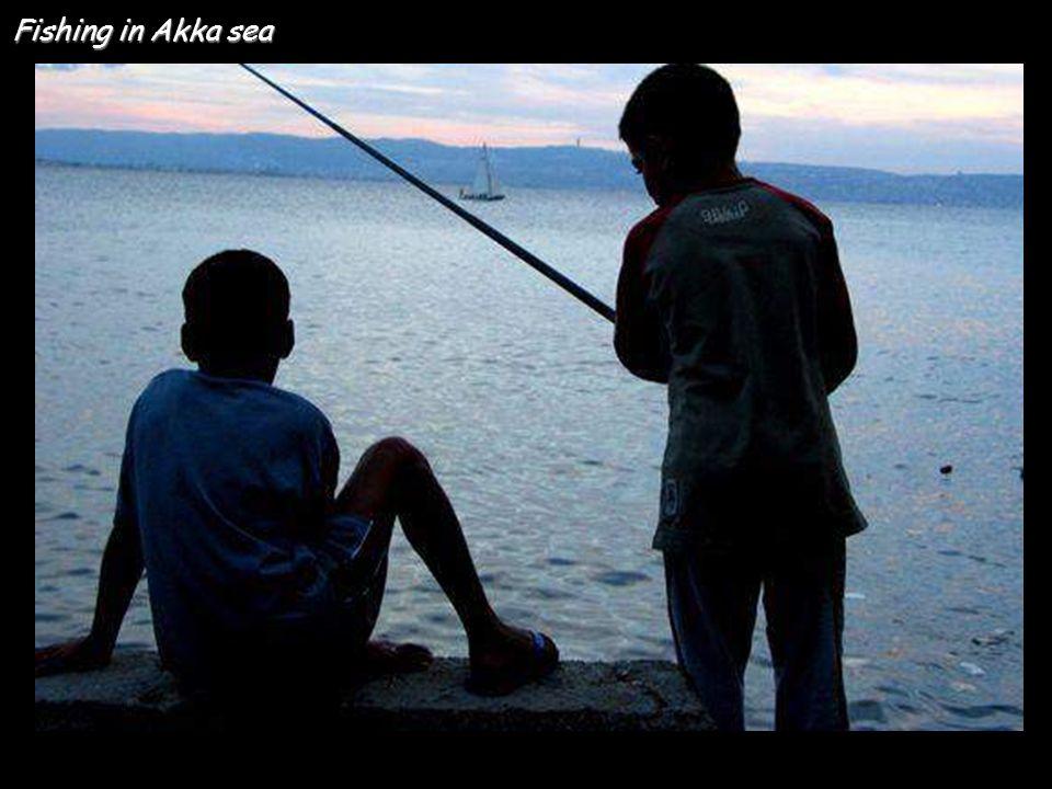 Fishing in Akka sea