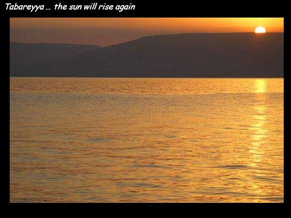 Tabareyya … the sun will rise again