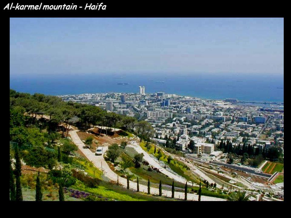 Al-karmel mountain - Haifa