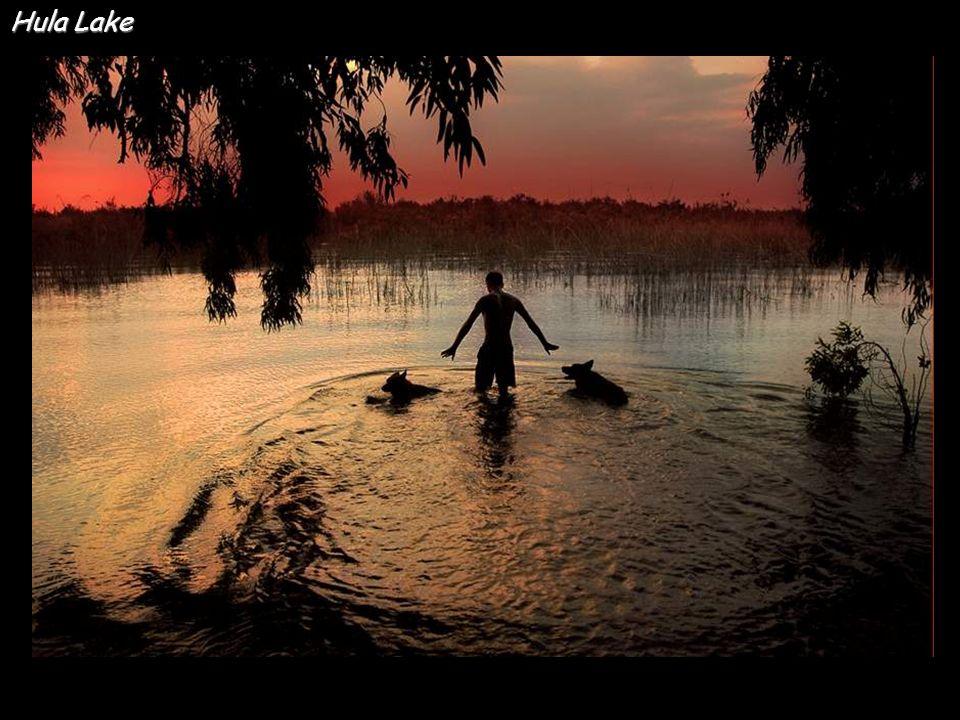 Hula Lake