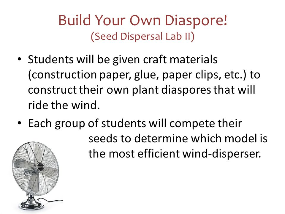 Build Your Own Diaspore! (Seed Dispersal Lab II)