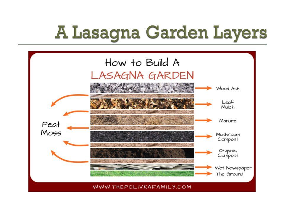 A Lasagna Garden Layers