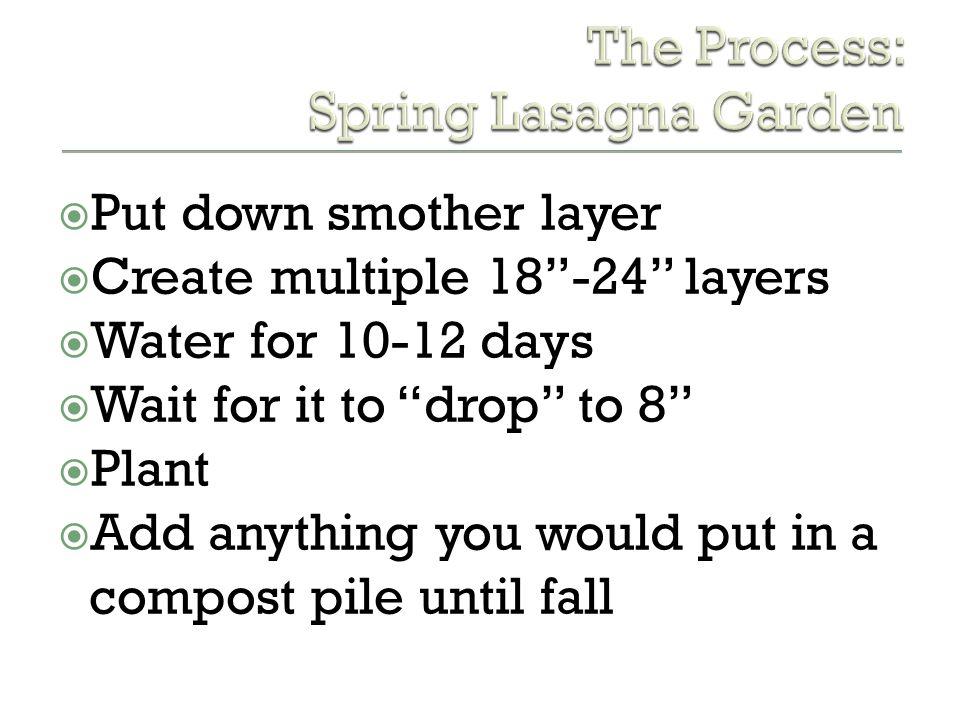 The Process: Spring Lasagna Garden