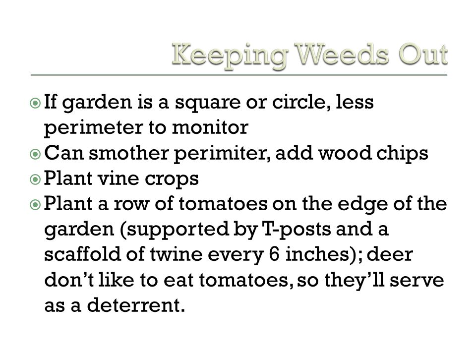 Keeping Weeds Out If garden is a square or circle, less perimeter to monitor. Can smother perimiter, add wood chips.