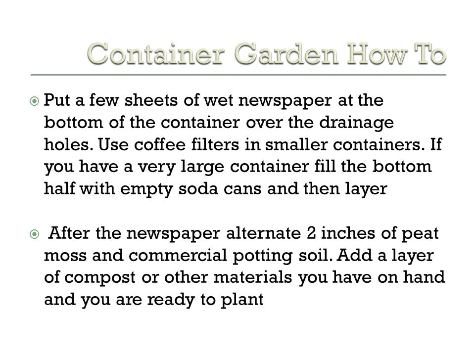 Container Garden How To