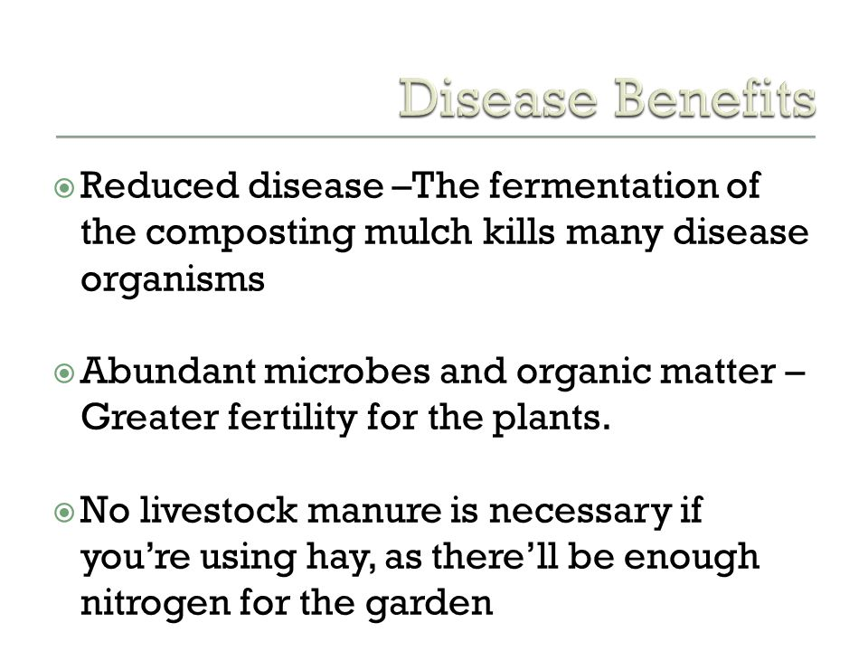 Disease Benefits Reduced disease –The fermentation of the composting mulch kills many disease organisms.