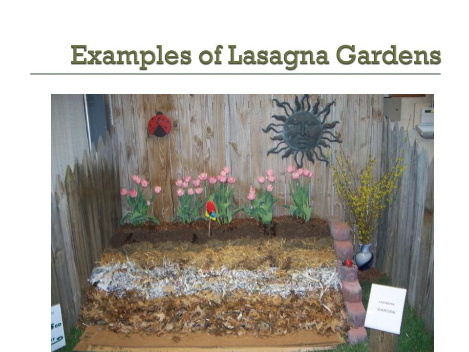 Examples of Lasagna Gardens