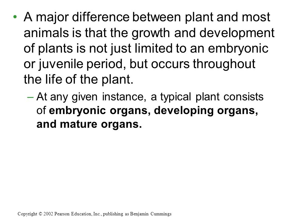 A major difference between plant and most animals is that the growth and development of plants is not just limited to an embryonic or juvenile period, but occurs throughout the life of the plant.